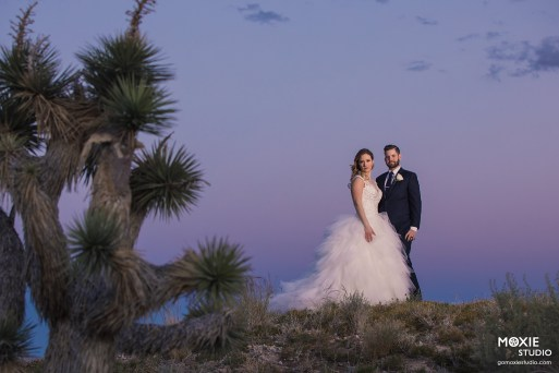 Bridal Spectacular_GregAliciaWed-1204-blog