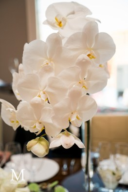Bridal Spectacular_MPLACE2016-06-240700Julie&Ben-MGM-Aria-Mandarin-Twist