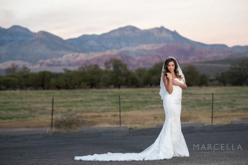 Bridal Spectacular_MarcellaP_SpringMTR_37