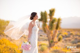 Bridal Spectacular_Moxie Studio at Las Vegas Paiute_Alyssa & Tyson_18