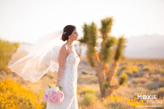 Bridal Spectacular_Moxie Studio at Las Vegas Paiute_Alyssa & Tyson_18