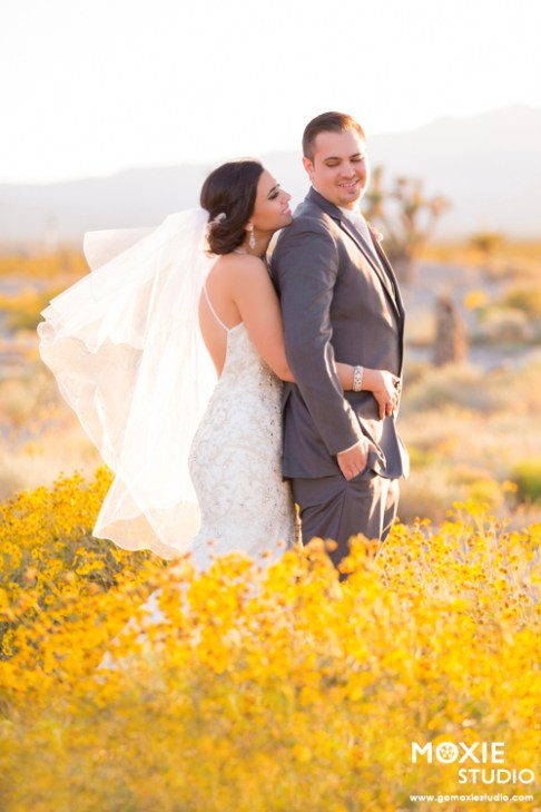 Bridal Spectacular_Moxie Studio at Las Vegas Paiute_Alyssa & Tyson_19