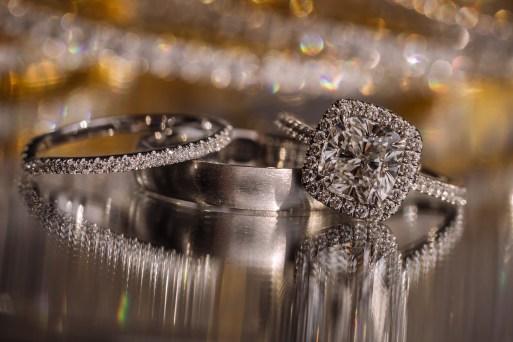 Bridal Spectacular_www.ellagagiano.com_natasha_and_sameer_GR-1