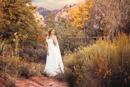LOWRES-MapleHillPhoto-BridalSpec2013-26