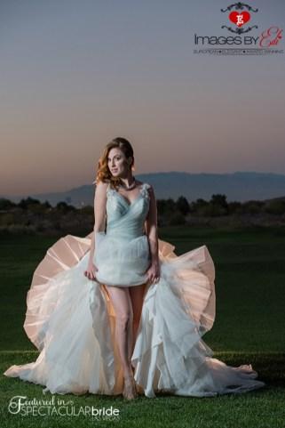 Spectacular-Bride_Images-by-EDI_Tina_13