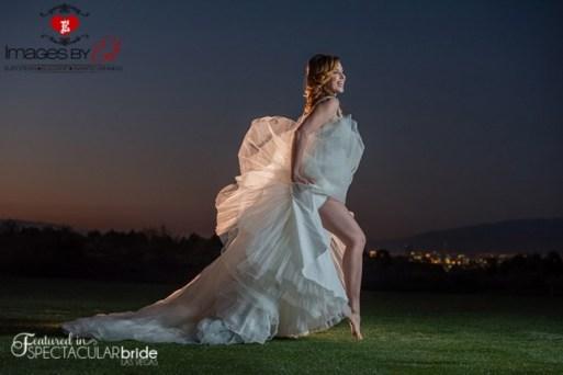 Spectacular-Bride_Images-by-EDI_Tina_18
