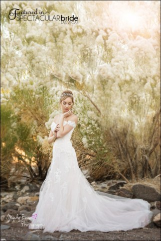 Spectacular-Bride_Mindy-bean-anthem1