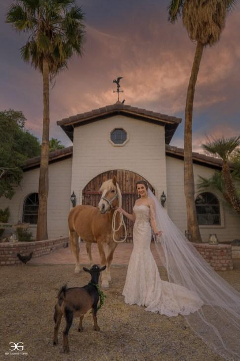 The Barn at The Farm by Ella Gagiano