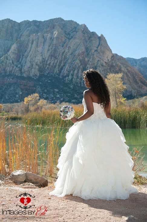 Spectacular Bride Images by EDI