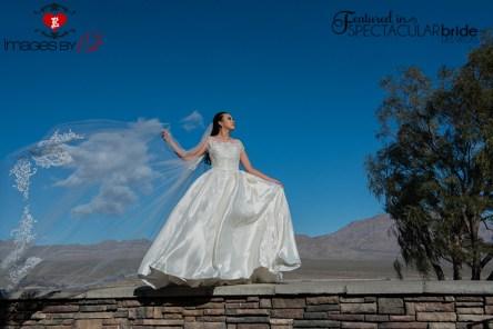 web_Images-by-EDI_Paiute_Denise_023