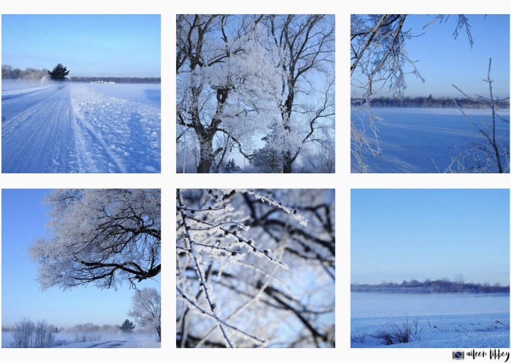 Snowy Landscape Photography With Frost Covered Trees In Winter