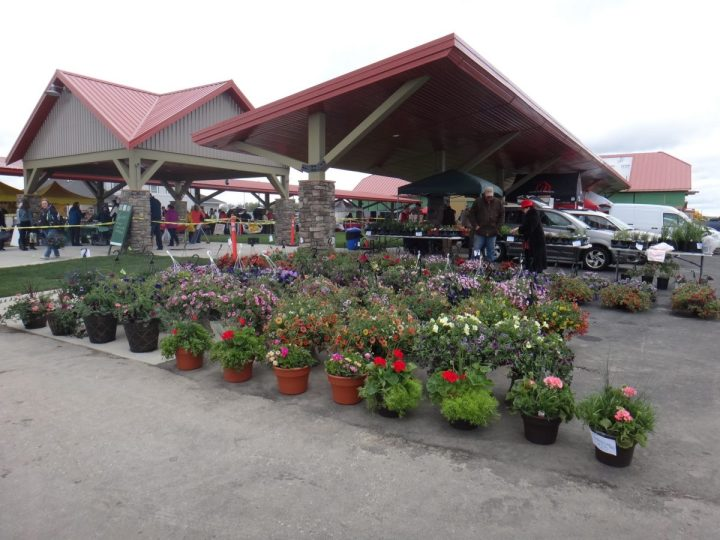 Frankenmuth Farmers Market New Permanent Location.