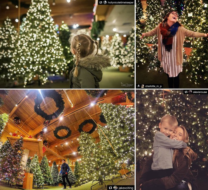 Bronner's Christmas Wonderland, (Artificial) Christmas Tree Room