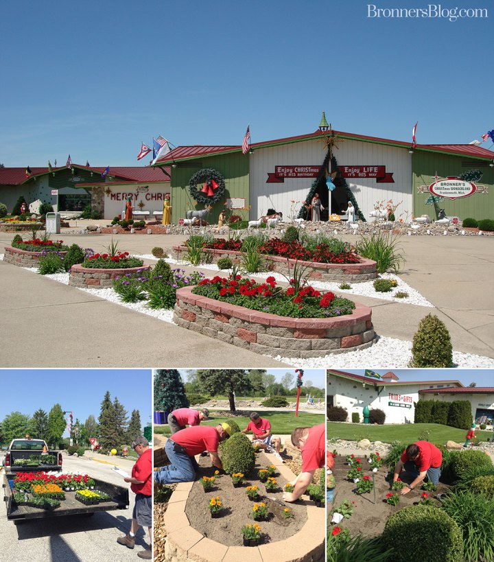 Staff plant flowers at Bronner's Christmas Wonderland in Frankenmuth, Michigan to mark the arrival of spring!