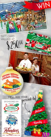 Win an overnight stay at Zehnder's Splash Village, Dinner at Zehnder's Restaraunt and a Bronner's $250 Gift Card And Exclusive Ornaments in our #MuthHoliday Contest