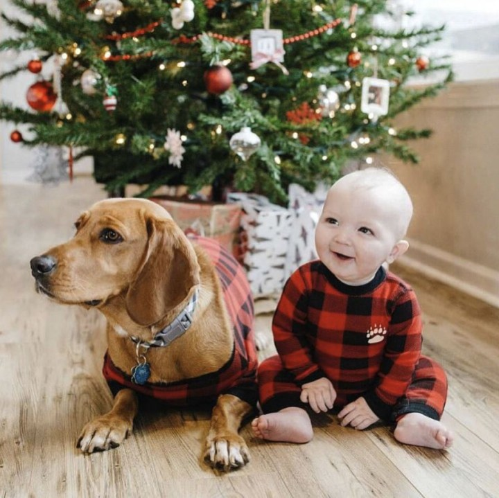 A baby and dog dressed in buffalo plaid sit beneath the Christmas tree.