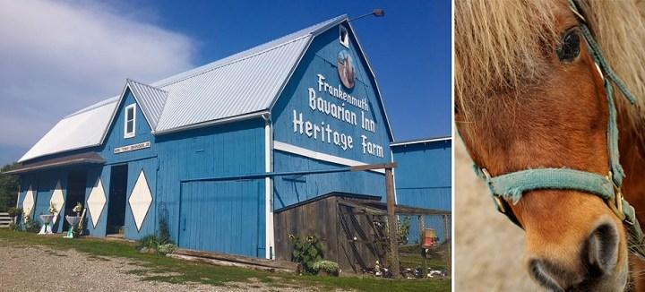 Grandpa Tiny's Heritage Farm in Frankenmuth Michigan