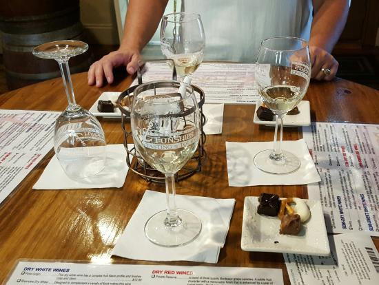 FunShips Wine and Chocolate Tasting in Frankenmuth, Michigan