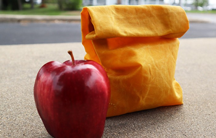 Order Up! How to Sew a Waxed Canvas Lunch Bag