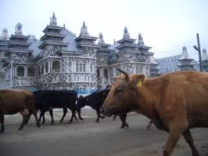 Zigeunerpalast