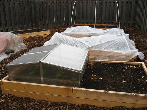 giardinaggio invernale all'interno di cassoni protetti