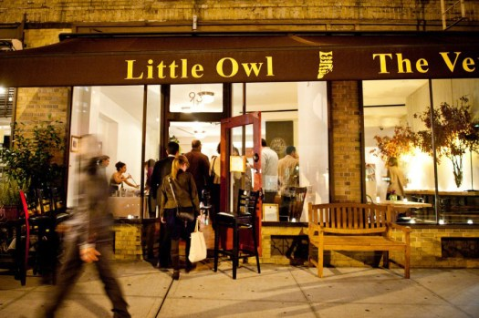 The-Little-Owl-01