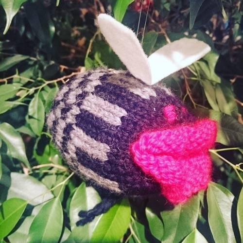 Jeg har fått strikket #storkjøttflue av kusine Gudrun