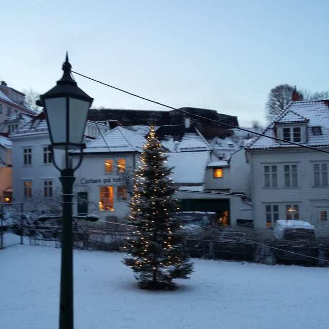 i xfe0fvisitnorway ingeborgflyttertilbergen jul christmas tree Continue reading rarr