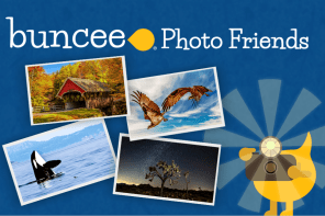 Buncee Photo Friends: Spreading Inspiration and Sharing Creativity