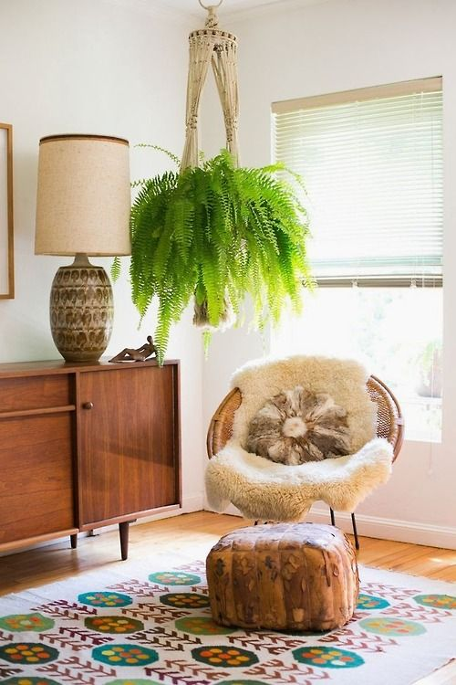 Modern Macrame Boston Fern
