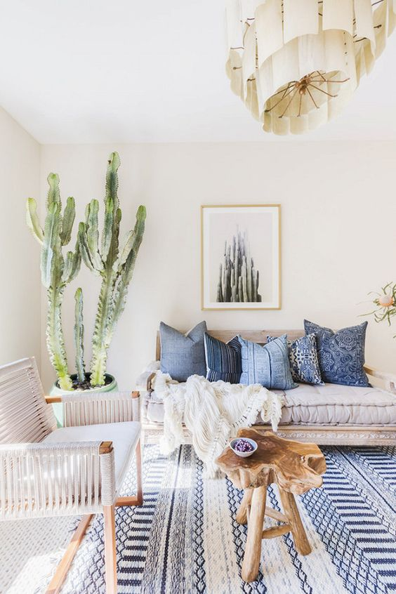 Area Rugs and House Plants