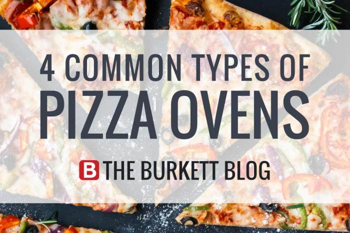 4 Common Types of Commercial Pizza Ovens