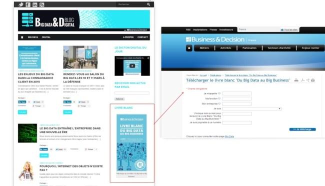 """Fidélisation/ conquête digitale - Landing Page Exemple de """"Landing Page"""" pour le Livre Blanc Big Data, Big Business"""