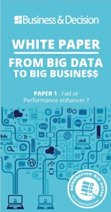 "Big Data white paper: ""From Big Data to Big Busine$$"""