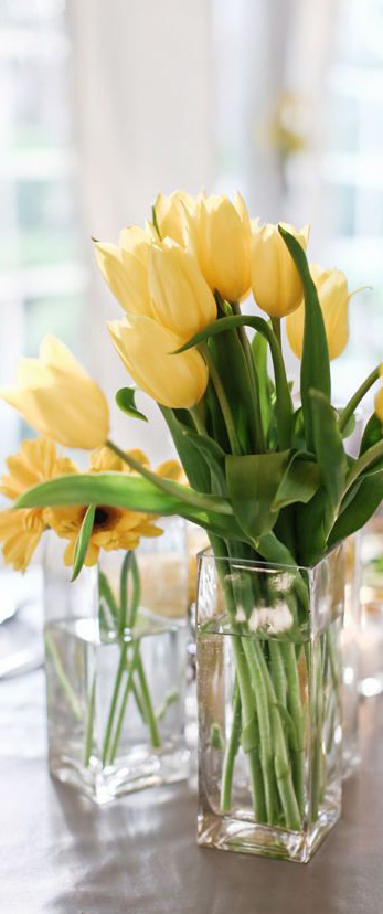 Spring Decorating Ideas Spring Home Decor Amp Design Ideas