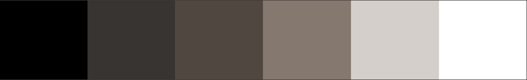 Interior Color Palette