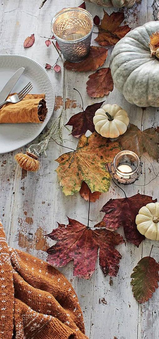 Fall Tablescape Ideas | Vibeke Design