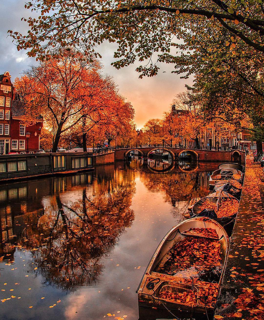 Amsterdam in the Fall | Karinal Melon on Instagram