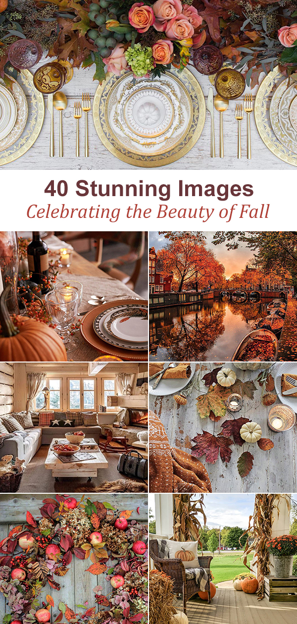 40 Beautiful Images of Fall