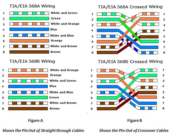 Cat6 Straight Through Wiring Diagram Cat 6 Wiring Diagram Wiring