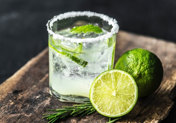 Margarita With Tequila Jello Shot Recipes