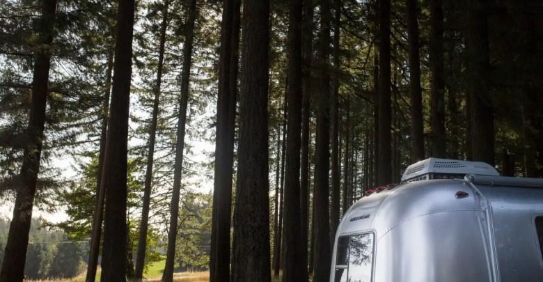 a camper trailer sits in a dark woods