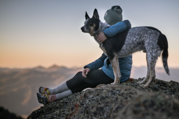 best dog camping gear