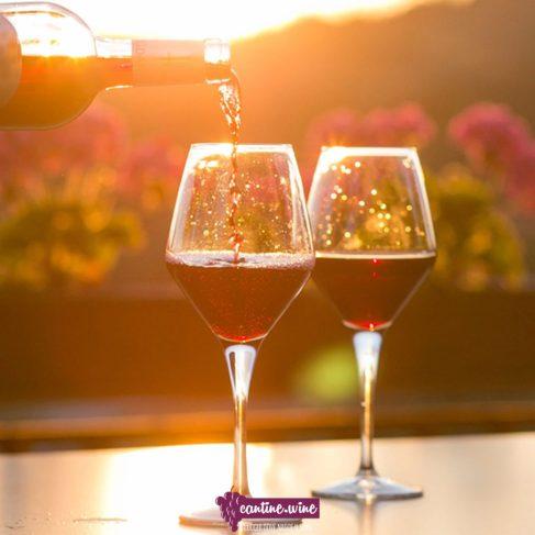 Due bicchieri di vino per analisi sensoriale del vino