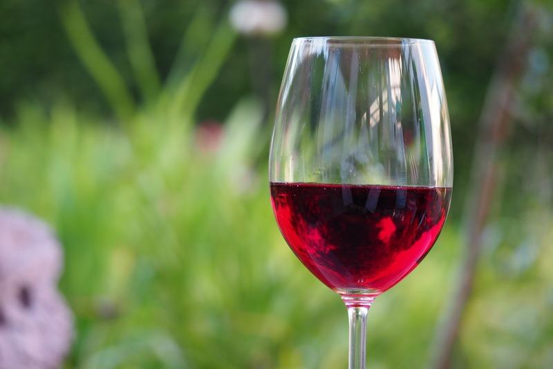 tannini vino