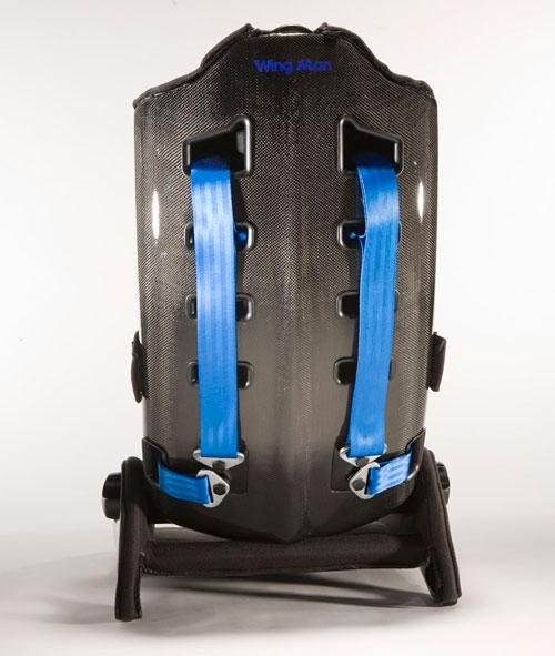 Carbon fiber babyseat