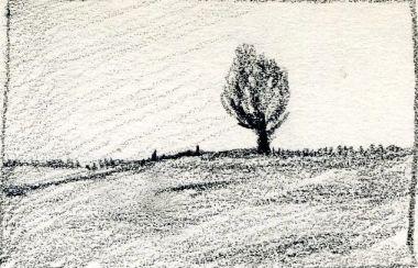 The Tree, Carol Crump Bryner, pencil