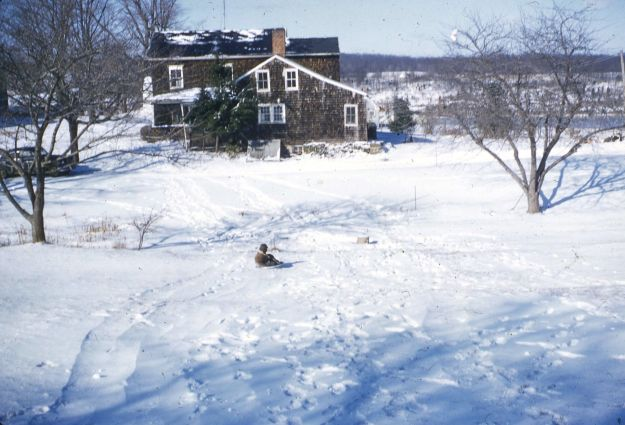 Sledding on the hill, 1950's