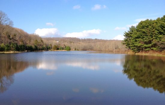 MacKenzie Reservoir, spring, 2014