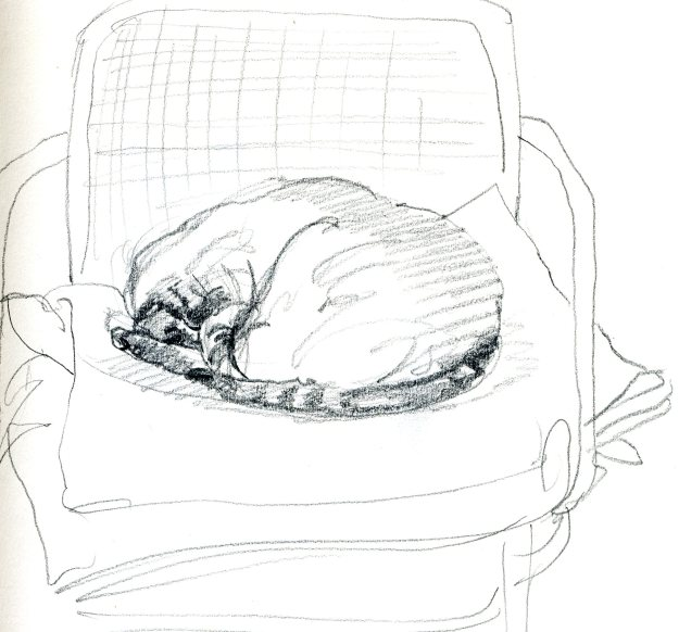 """Yoda on a Favorite Chair,"" Carol Crump Bryner, pencil drawing, 1995"